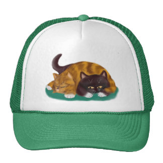 Nap Time flopped across big kitty Trucker Hat