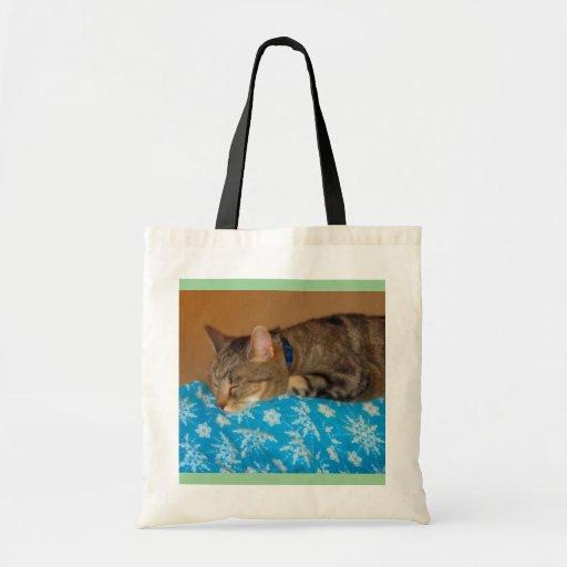 Nap Time For Indigo Canvas Bag