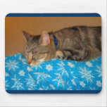 Nap Time For Indigo Mouse Pads