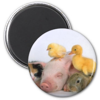 Nap Time for the Animals 6 Cm Round Magnet