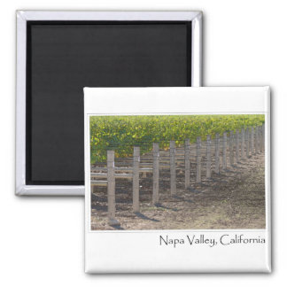 Napa Valley California Vineyard Magnet