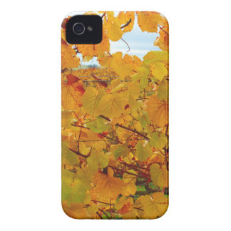 Napa Valley Wine Country in the Fall Case-Mate iPhone 4 Cases