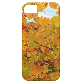 Napa Valley Wine Country in the Fall iPhone 5 Cover
