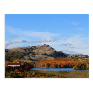 Napa Valley Wine Country in the Fall Postcard