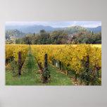 Napa vineyards poster