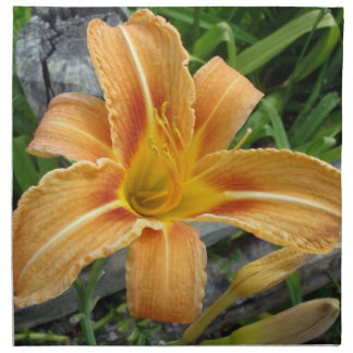 Napkins With Orange Daylily-Tiger Lily Flower