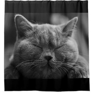 Napping Gray Cat Face Shower Curtain