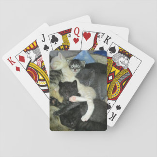 Napping Kittens Playing Cards, Standard Deck Playing Cards