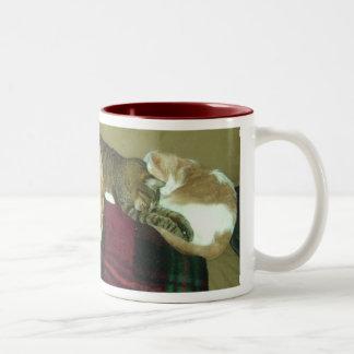napping trio Two-Tone coffee mug