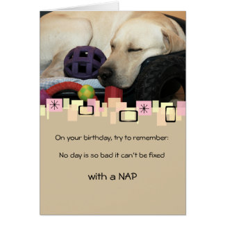Napping Yellow Labrador Retriever All Occasion Note Card