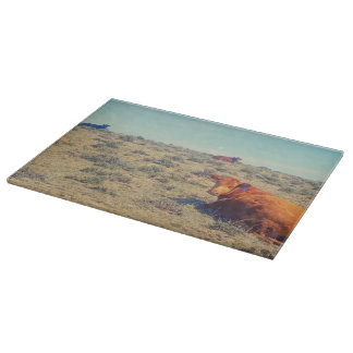 Naptime in April Glass Cutting Board