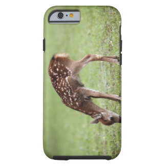 Nara Prefecture, Honshu, Japan Tough iPhone 6 Case