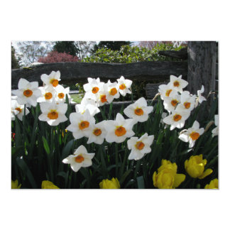 "Narcissus and Wooden Fence 5"" X 7"" Invitation Card"