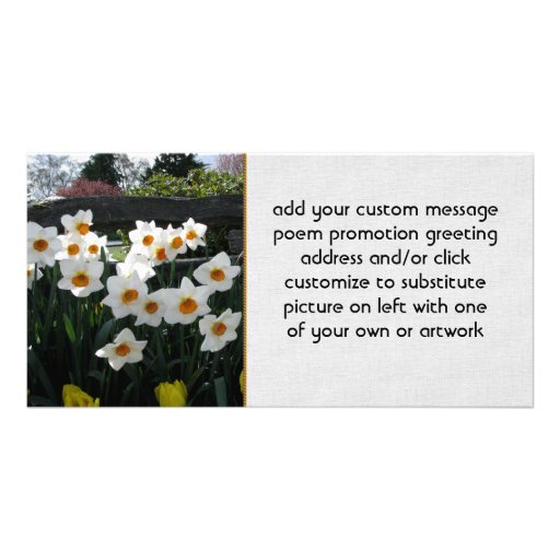 Narcissus and Wooden Fence Photo Greeting Card