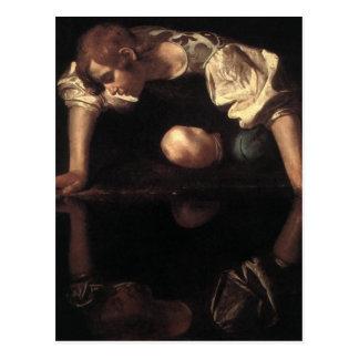Narcissus Postcards