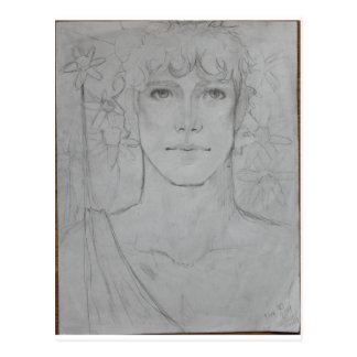 Narcissus Post Card