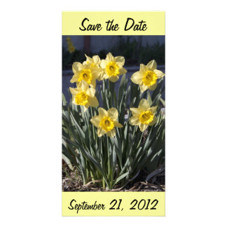 Narcissus Save the date Photo Card