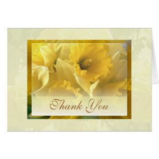 narcissus thank you greeting cards