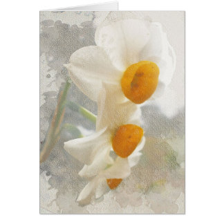 Narcissus. Watercolor. Card