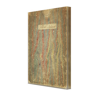 Narraganset Bay Topographical Chart Gallery Wrap Canvas