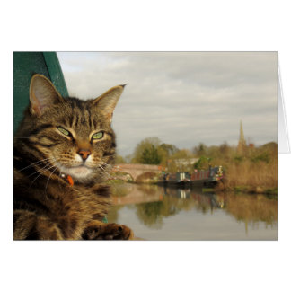 Narrowboat Cat Canal Scene at Braunston. Card
