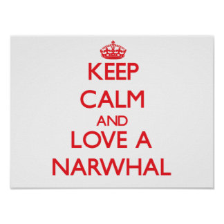 Narwhal Print