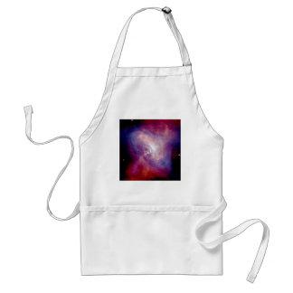 NASA - X-Ray & Optical Images of the Crab Nebula Standard Apron