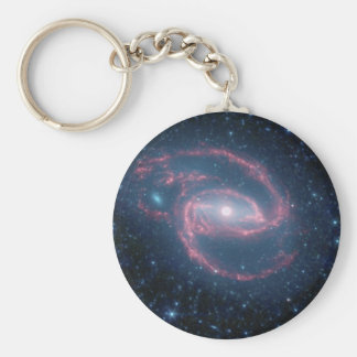 NASAs Coiled Creature of the Night Key Chain