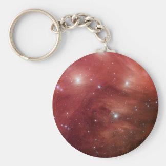 NASAs - Pink Pleiades Basic Round Button Key Ring