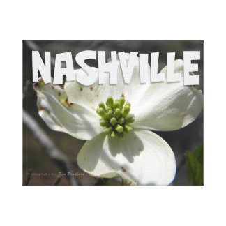 Nashville Dogwood Canvas Print