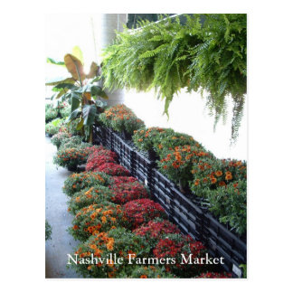 Nashville Farmers Market Postcard