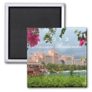 Nassau Bahamas Travel Photo Souvenir Fridge Magnet