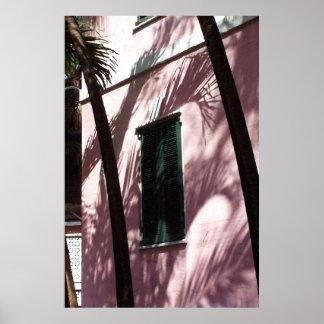 Nassau Library Pastel Pink Poster Print