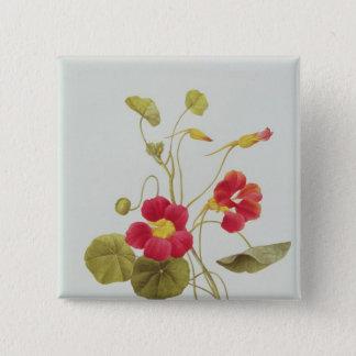 Nasturtium 15 Cm Square Badge