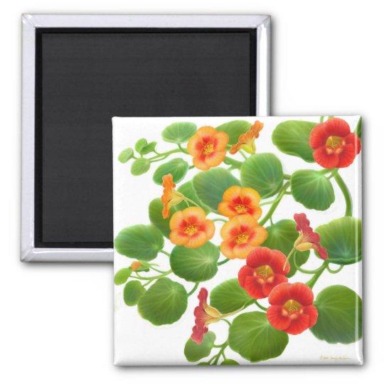Nasturtium Garden Flowers Magnet