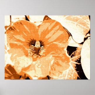 Nasturtium plant poster