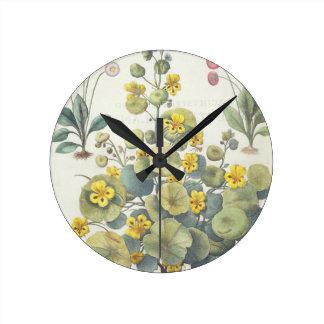 Nasturtiums and Daisies: 1.Nasturtium Indicum; 2.B Round Clock