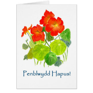 Nasturtiums Birthday Card - Welsh Greeting