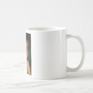 nat coffee mugs