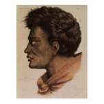Natai, a Maori chief from Bream Bay, New Zealand Postcard