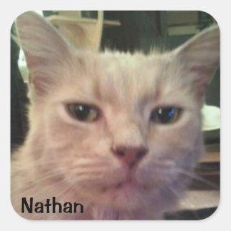 NATHAN STICKER