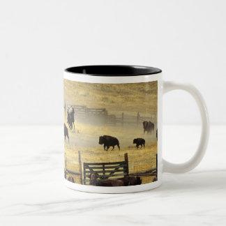 National Bison Range Roundup in Montana Two-Tone Coffee Mug