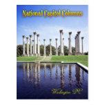 National Capitol Columns, Washington DC Postcard