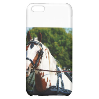 national drive 2010 iPhone 5C cases