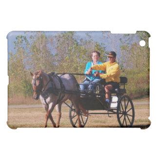national drive in 2010 iPad mini covers