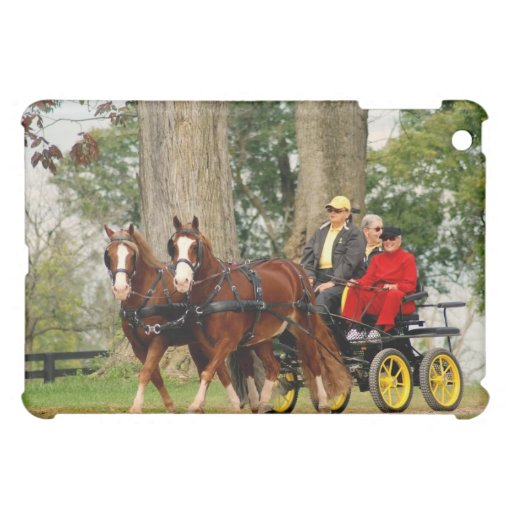 national drive cover for the iPad mini