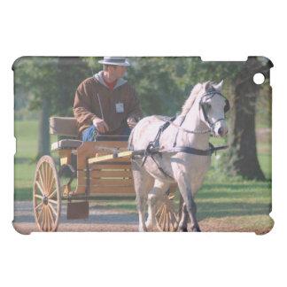 national drive iPad mini covers