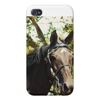 national drive iPhone 4/4S cases
