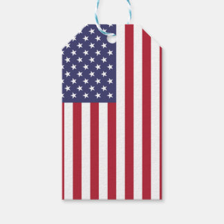 National Flag of the United States of America USA