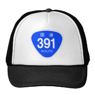 National highway 391 line - national highway sign trucker hats